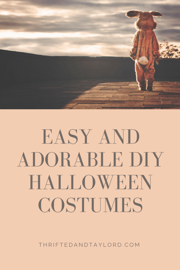 Easy and Adorable DIY Halloween Costumes | Thrifted & Taylor'd