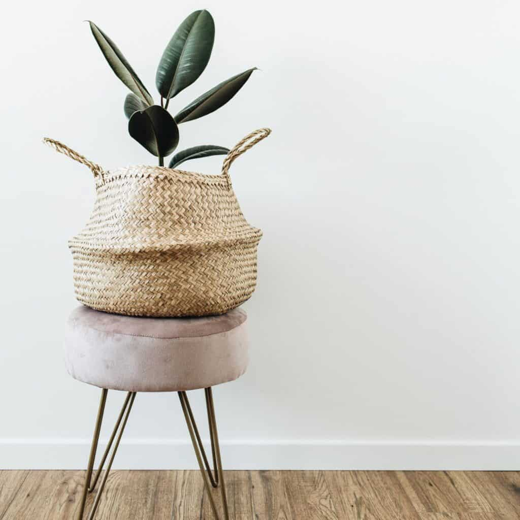 An indoor plant inside a woven basket sitting on top of a taupe footstool which is in front of a white wall.